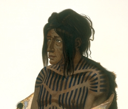Mahsette-Kuiuab, Chief of the Cree-Indians