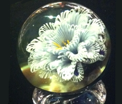 Lace Flower Marble by Thomas Friedman