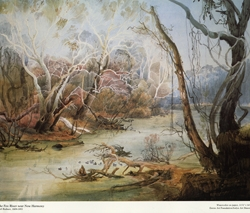 Karl Bodmer's The Fox River near New Harmony Poster